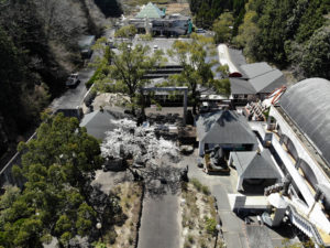 大観音寺上空をドローンで撮影した静止画像