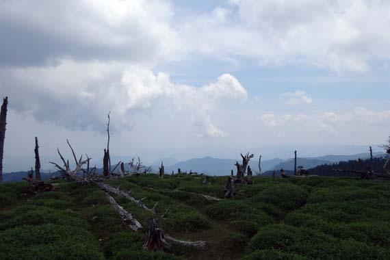 大台ケ原の風景