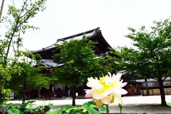 三重県津市 専修寺