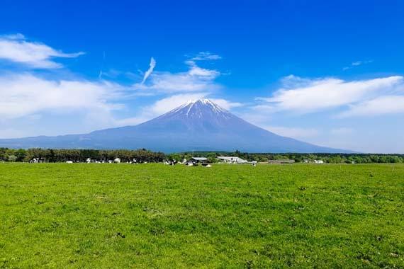 朝霧高原から見た富士山